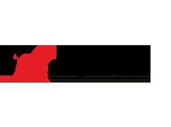 Logo_VN-Management_